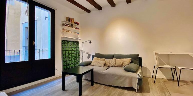 acogedor-piso-de-alquiler-a-escasos-minutos-del-parc-de-la-ciutadella-salon-1