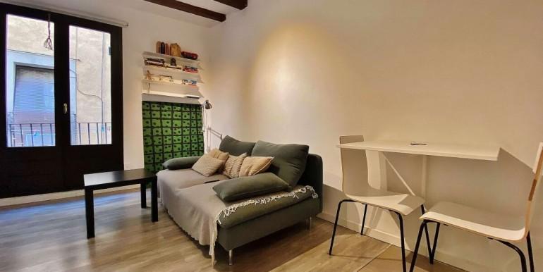 acogedor-piso-de-alquiler-a-escasos-minutos-del-parc-de-la-ciutadella-salon-4