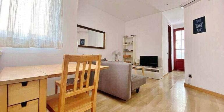acogedor-apartamento-en-venta-con-licencia-turistica-junto-el-mercat-de-collblanc-salon-2