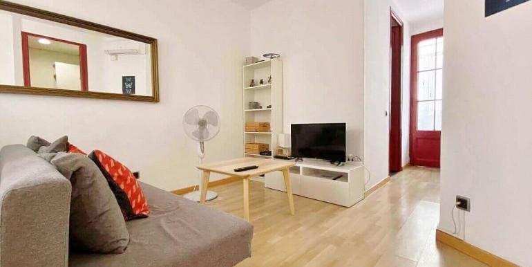 acogedor-apartamento-en-venta-con-licencia-turistica-junto-el-mercat-de-collblanc-salon-6